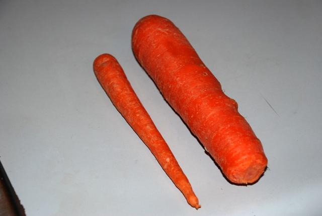0310_carrot