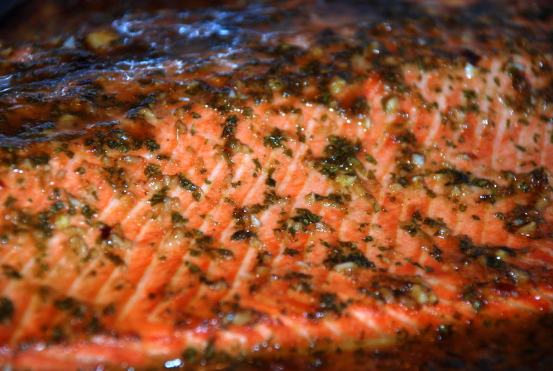 0810_salmon